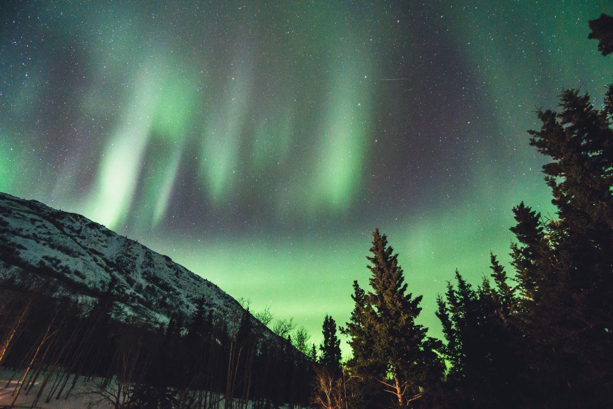 Yukon-Northern-Lights-Provincial-Nomination-Program