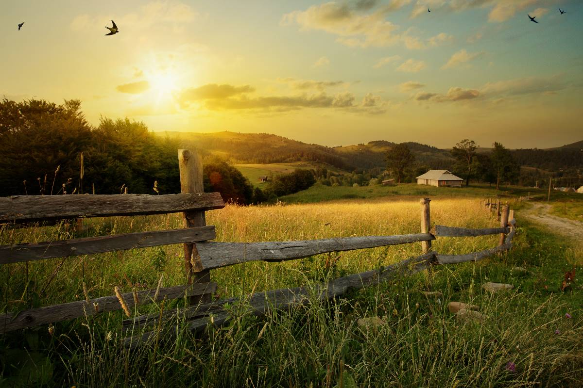 rural farm land at sunset | immigrate to Canada