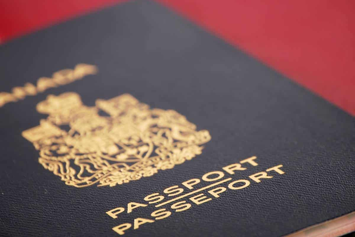 Canadian Immigration with David Allon: How to Tell the Fake from the Real?