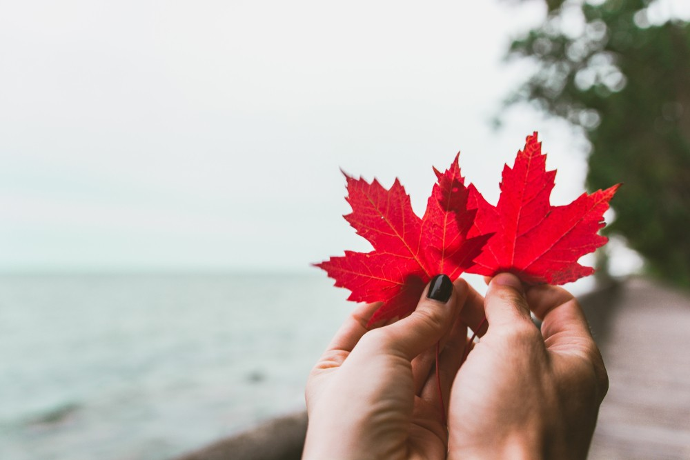 Got Family in Canada? Join them with a Family Sponsorship Visa