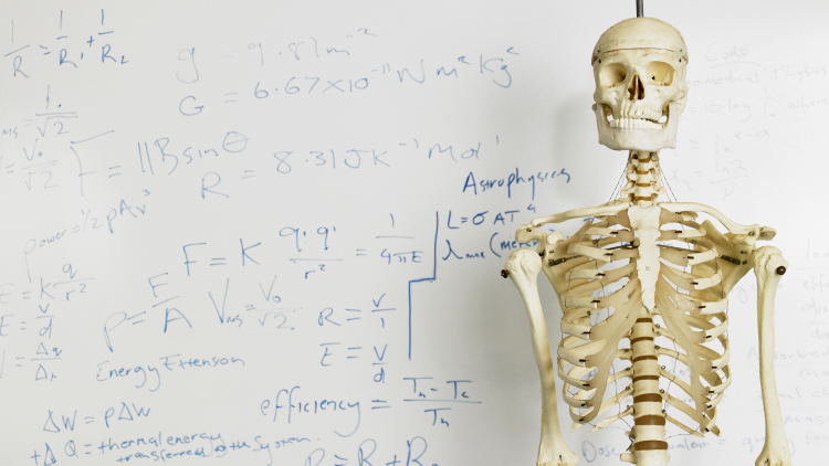 Top 5 Medical Schools to study at in Canada